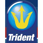 Trident Growth Fund